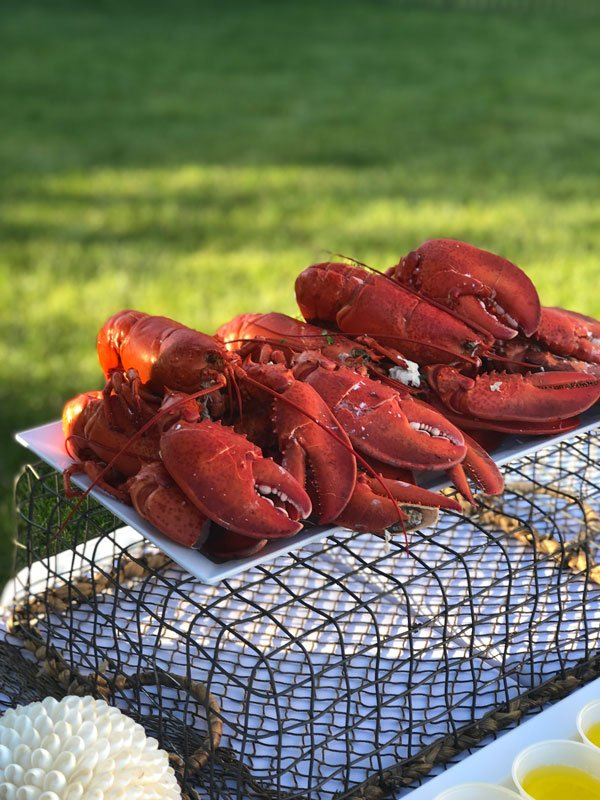 lobsters-sitting-on-top-of-cages
